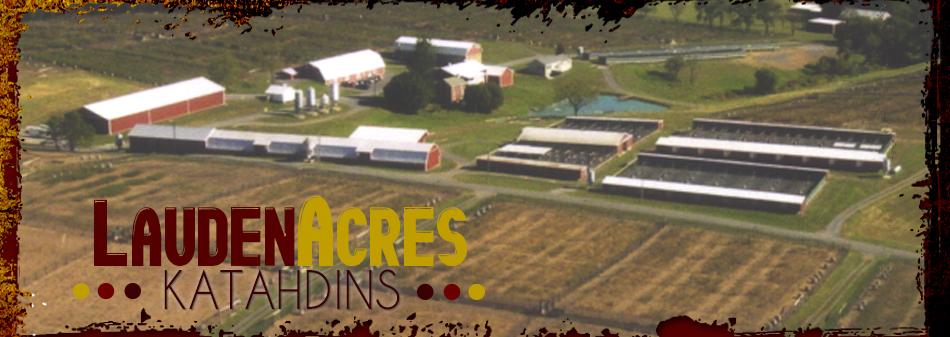Lauden Acres :: About Us
